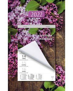 Week Scheurkalender 2022 (week begint op Maandag)